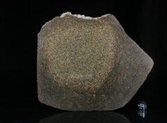 NWA 13767 (227 gram)