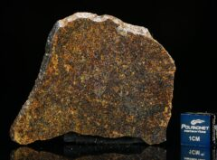 NWA 13696 (9.77 gram)
