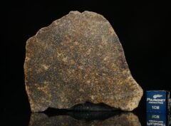 NWA 13696 (14.29 gram)