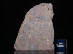 NWA 6308 (8.97 gram)