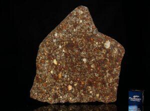 NWA 7814 (24.57 gram)