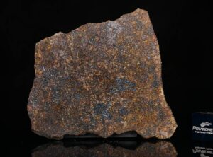 NWA 13696 (12.74 gram)