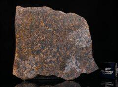 NWA 13696 (15.29 gram)