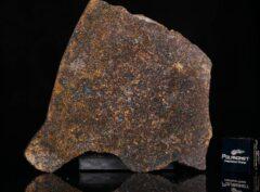 NWA 13696 (14.77 gram)