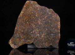 NWA 13696 (15.45 gram)