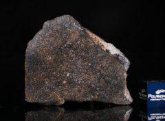 NWA 13679 (22.40 gram)