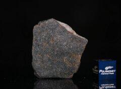 NWA 13679 (6.50 gram)