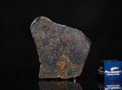 NWA 13679 (6.44 gram)
