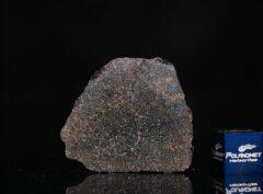 NWA 13679 (4.24 gram)