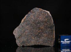 NWA 13679 (6.27 gram)