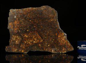 ZAG (21.71 gram)
