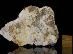 MC 194 (9.53 gram)