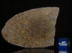 NWA 11641 (14.07 gram)