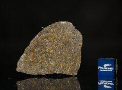 NWA 11641 (9.13 gram)