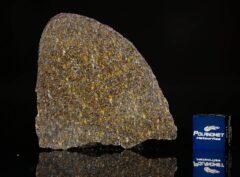 NWA 11641 (9.67 gram)