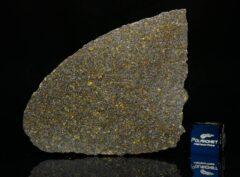 NWA 11641 (16.10 gram)
