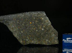 NWA 8221 (8.50 gram)