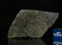 NWA 8221 (8.75 gram)