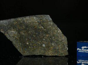 NWA 8221 (7.47 gram)