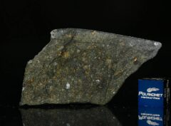 NWA 8221 (7.48 gram)