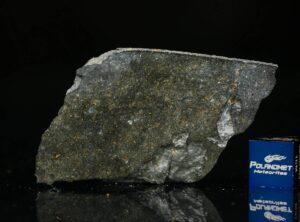 NWA 8221 (8.38 gram)