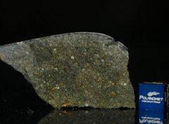 NWA 8221 (9.10 gram)