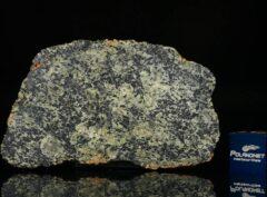 NWA 13367 (6.45 gram)