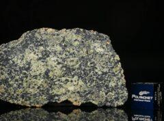 NWA 13367 (6.86 gram)
