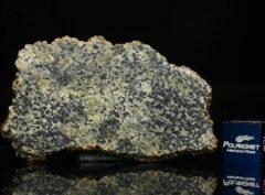 NWA 13367 (5.67 gram)
