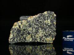 NWA 13367 (2.82 gram)