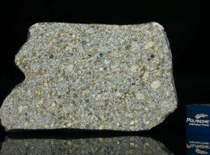 NWA 14150 (20.70 gram)
