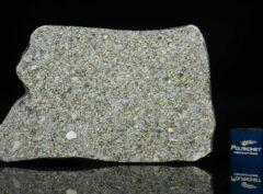 NWA 14150 (22.70 gram)