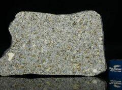 NWA 14150 (23.58 gram)