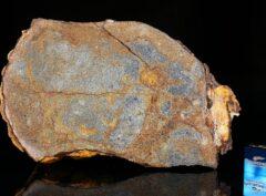 Al Haggounia 001 (279 gram) endpiece