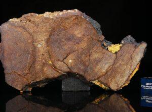 Al Haggounia 001 (51.50 gram)