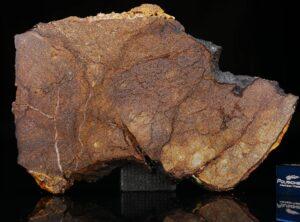 Al Haggounia 001 (60.00 gram)