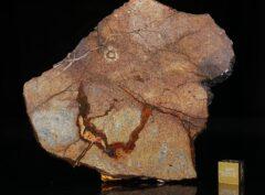 Al Haggounia 001 (78.00 gram)