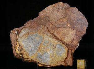 Al Haggounia 001 (74.70 gram)