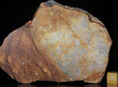 Al Haggounia 001 (78.60 gram)