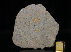 NWA 14149 (18.25 gram)