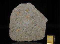 NWA 14149 (19.39 gram)
