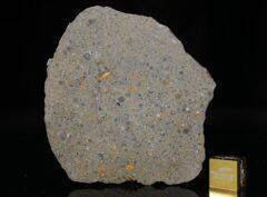 NWA 14149 (19.65 gram)