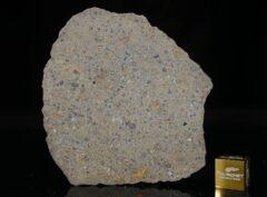 NWA 14149 (19.90 gram)