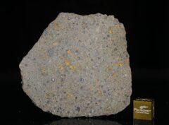 NWA 14149 (19.15 gram)