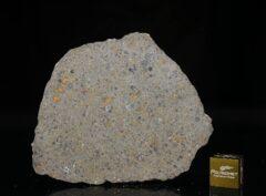 NWA 14149 (21.34 gram)