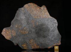 NWA 13847 (152.3 gram)
